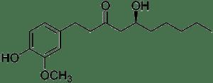 Strukturformel von 6-Gingerol