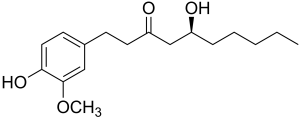 Gingerol-300x118 6-Gingerol Inhaltsstoff