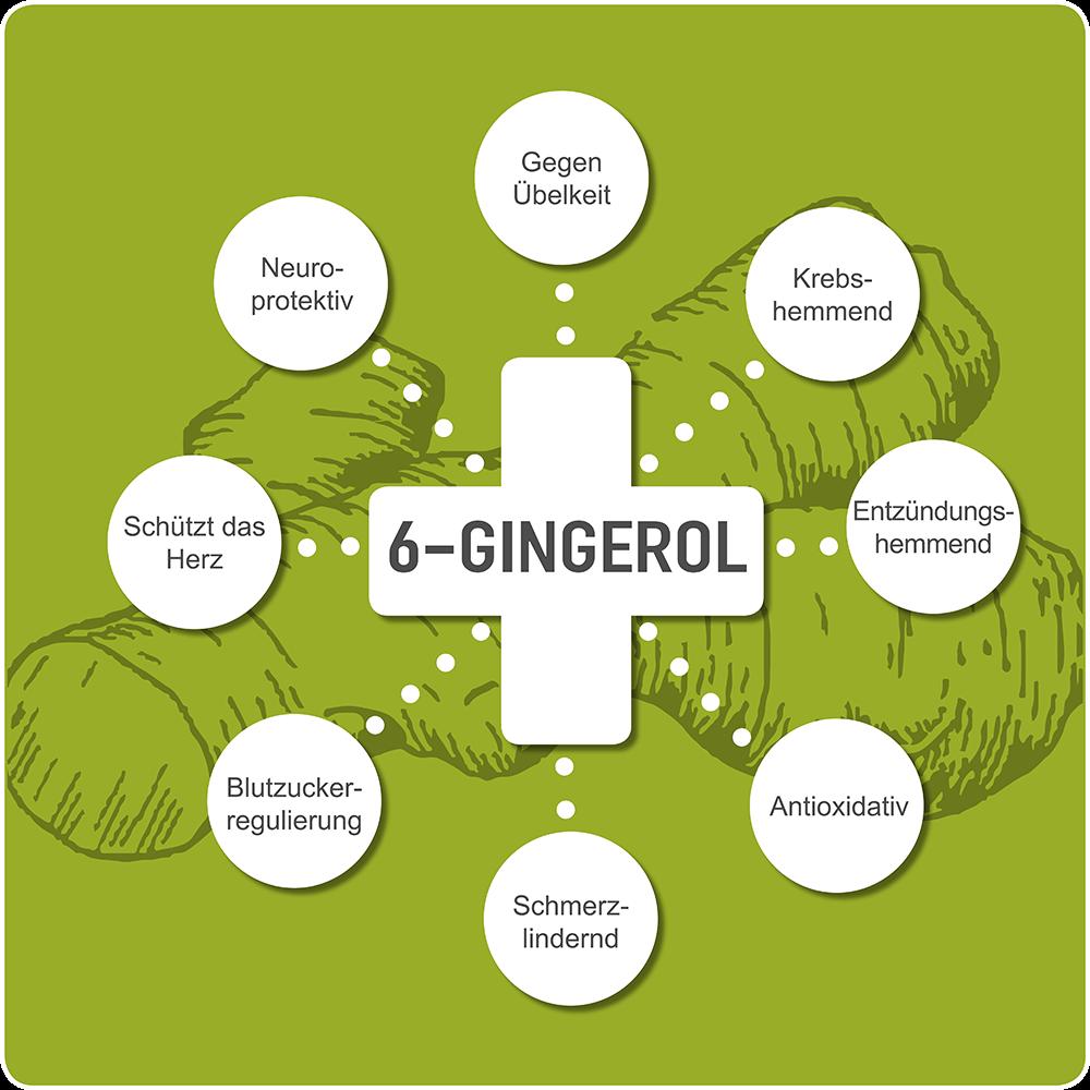 6-Gingerol pharmakologische Eigenschaften