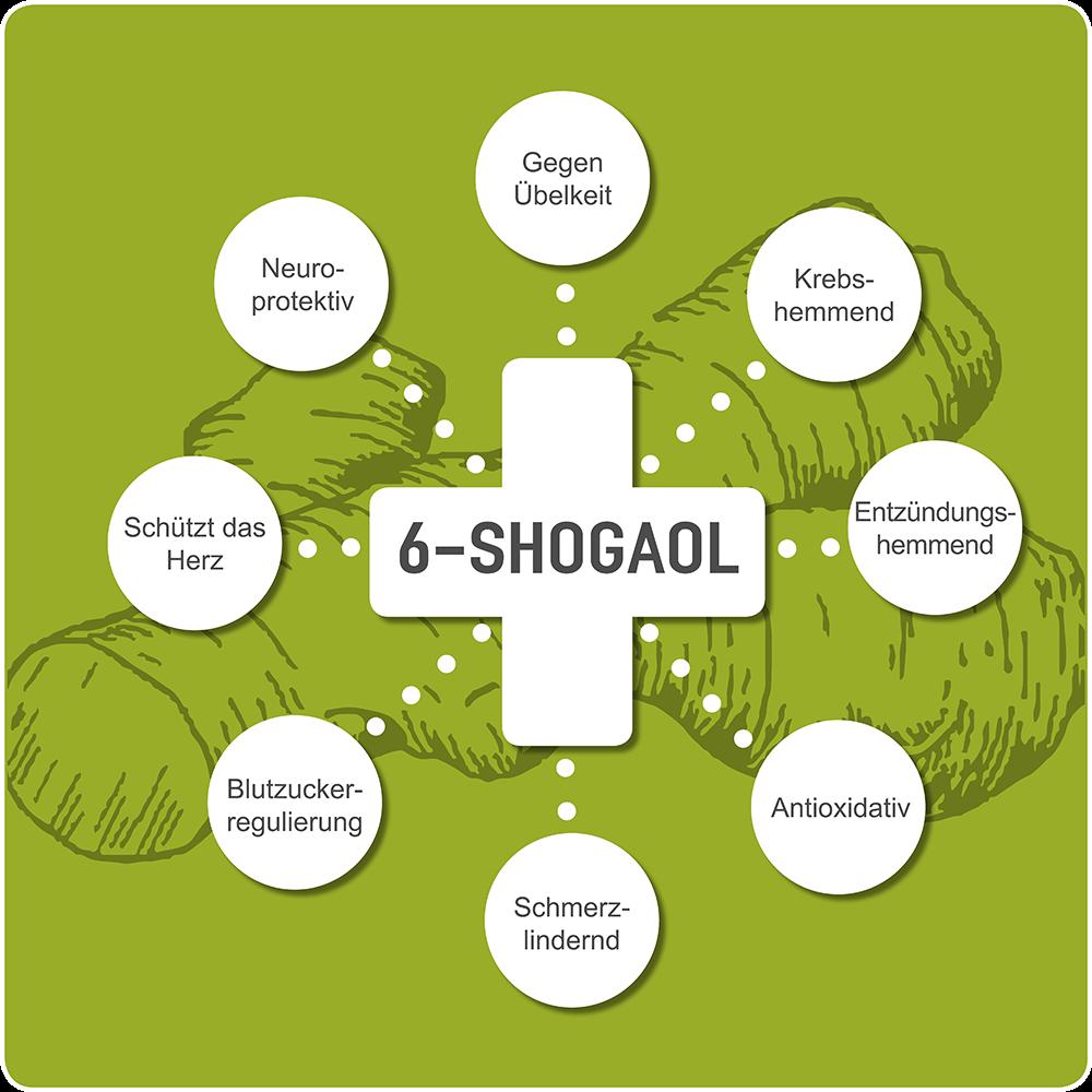 6-Shogaol pharmakologische Eigenschaften