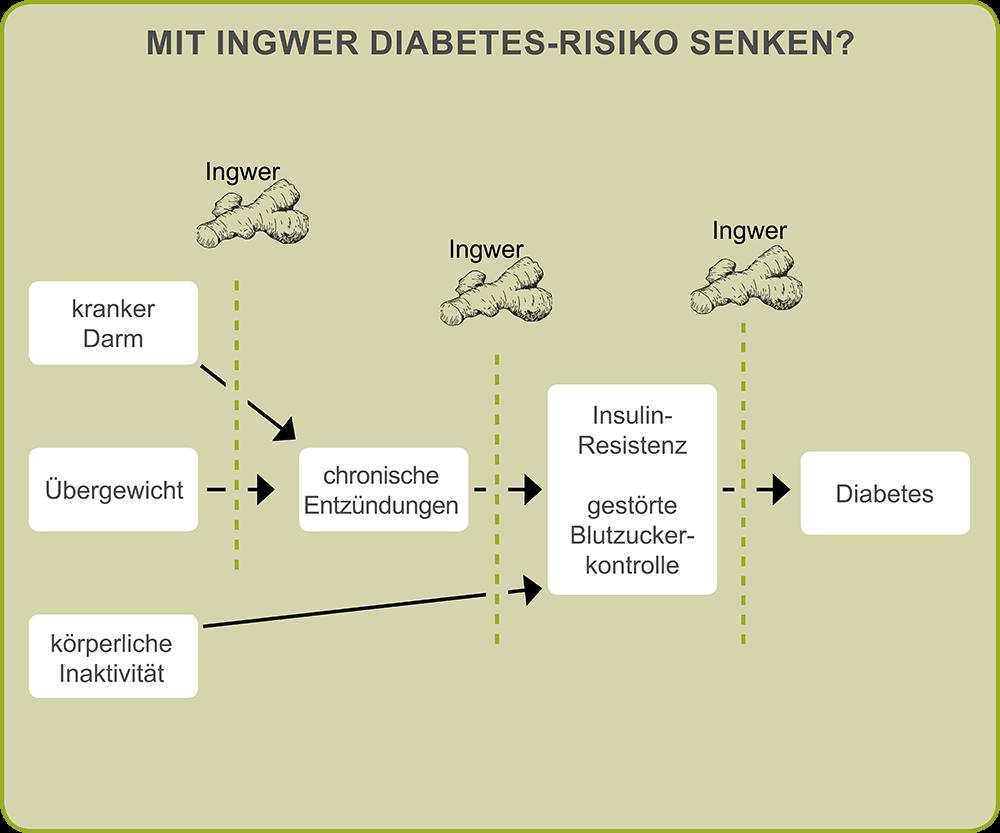 Kann Ingwer das Diabetes-Risiko senken?