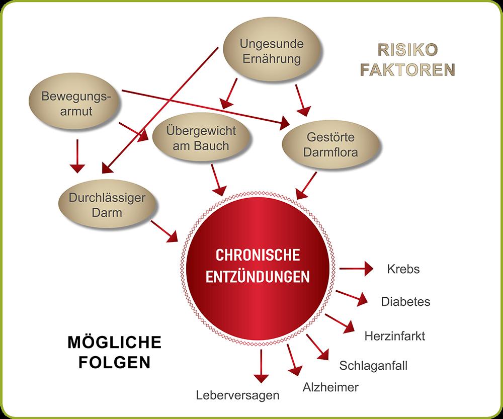 Risiko Faktoren für chronische Entzündungen