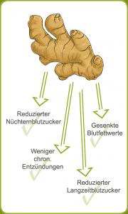 Zusammenhang zwischen Ingwer und Insulin-Resistenz